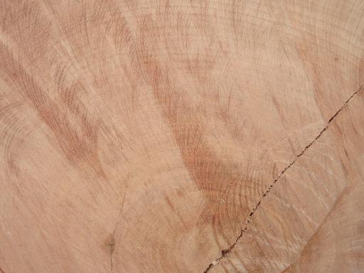 与真桃花心木在很多相似的应用领域